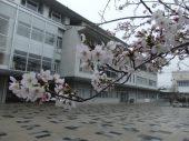 学校の正門広場を思い出の場所としたパブリックアート